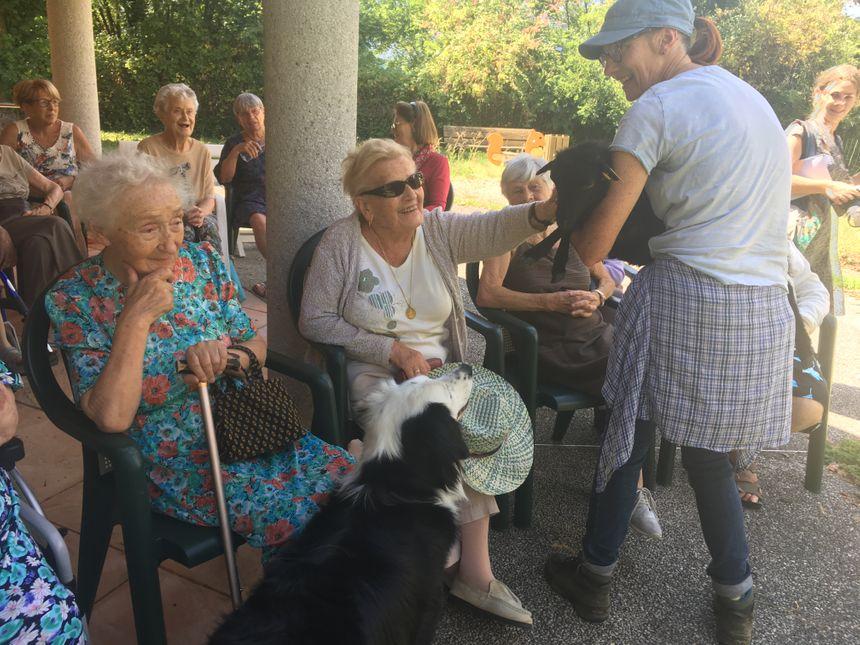 Les résidents ont succombé devant les petits moutons de Carole Plancq.