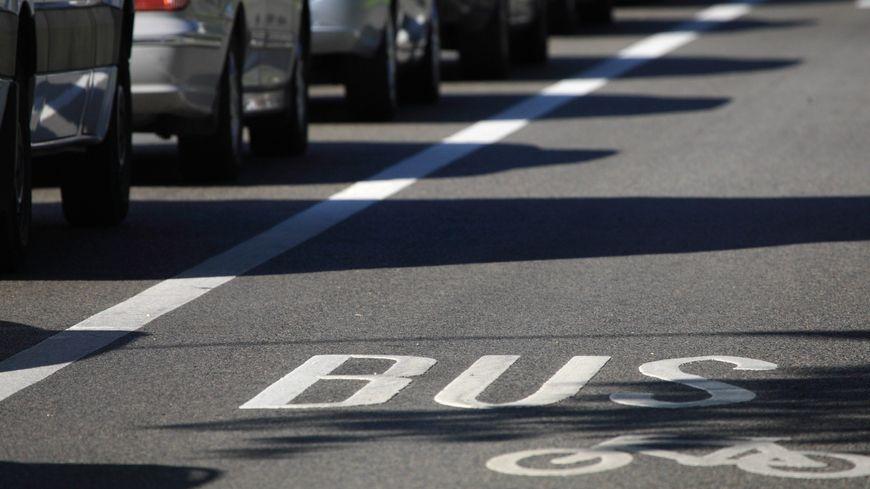 Les voitures et les vélos doivent mieux se partager la route, dit la Fédération de cyclotourisme
