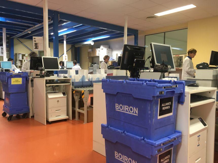 A l'intérieur du laboratoire Boiron à Rennes.