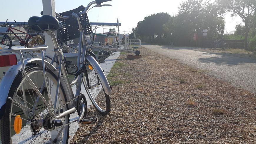 Traversé par la ViaRhôna, le Gard est un territoire stratégique pour le cyclotourisme.