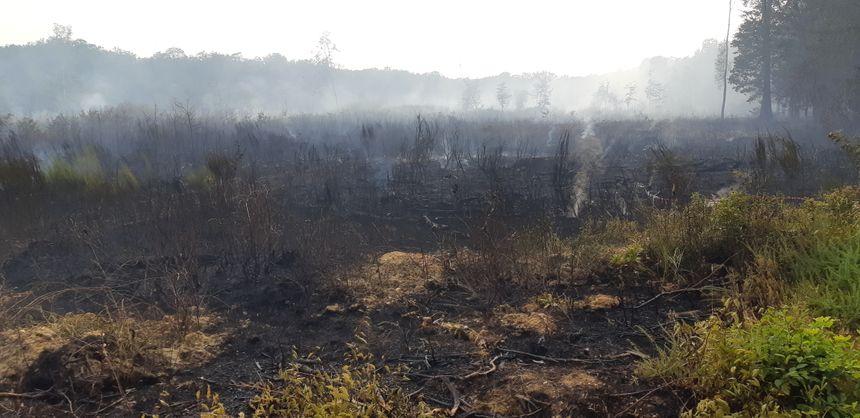 Une providentielle averse, courte mais intense, a aidé les pompiers à fixer le feu mais les destructions sont importantes
