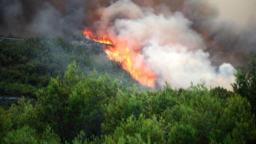Plus de 200 hectares de forêt ont brûlé dans le Gard depuis le début de l'été