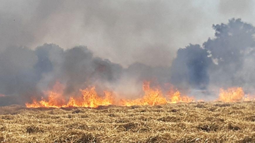 Le risque de feu de végétation est important en raison de la sécheresse