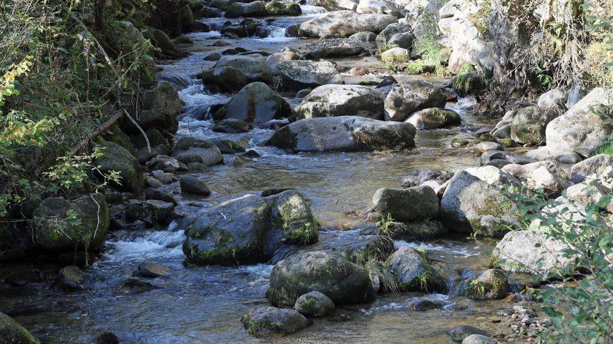 De nombreux cours d'eau sont presque à sec ou à des niveaux très bas (photo d'illustration)