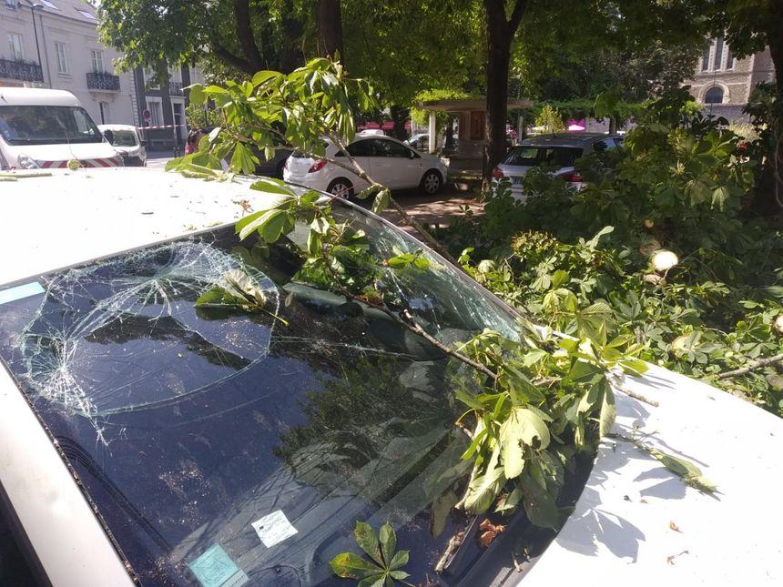 Le pare-brise du véhicule cassé par la chute d'une énorme branche place Canclaux à Nantes