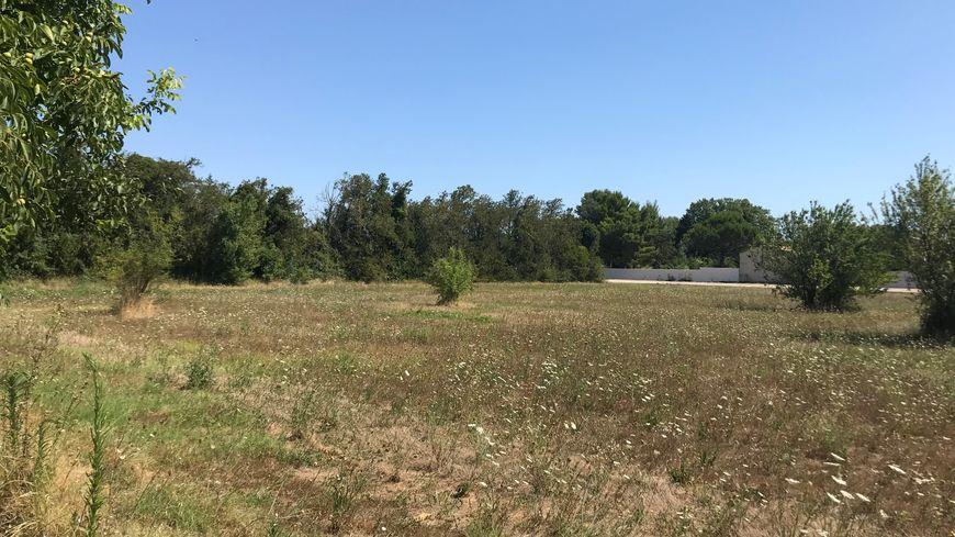 Le grand terrain est aujourd'hui encore complètement abandonné