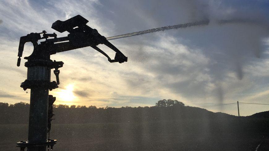Seule l'irrigation pour les cultures soumises à des quotas annuels est autorisée.