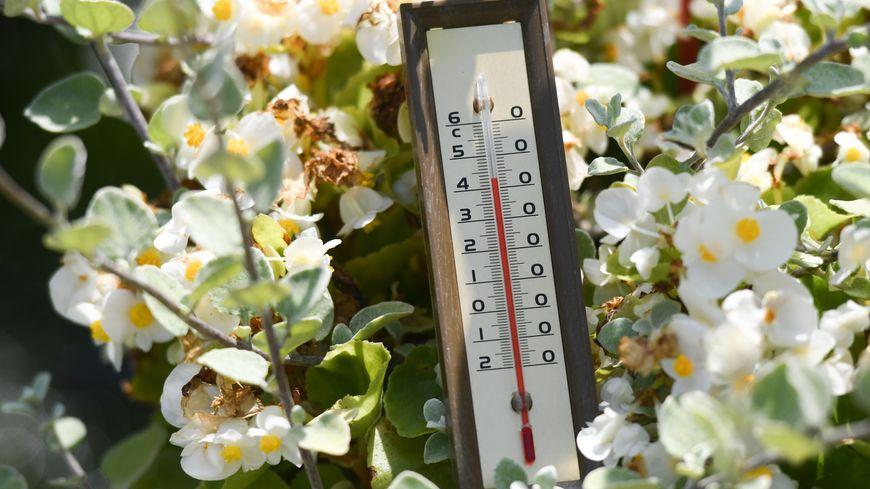 Météo France prévoit des températures de 37 °C à 42 °C sur une grande partie du pays, avec des pointes à 43 °C localement jeudi 25 juillet 2019