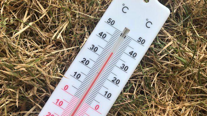 Les records absolus de chaleur ont été battus en Seine-Maritime et dans l'Eure