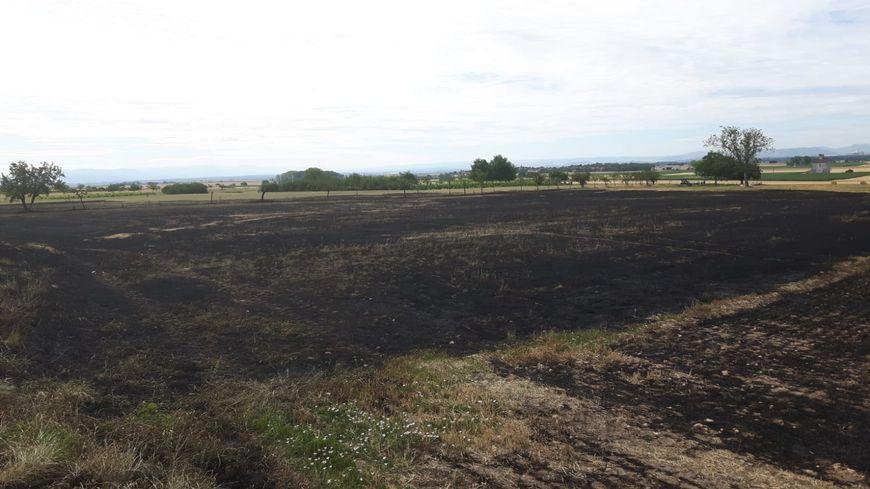 A Aubiat, un champ dévasté par un incendie