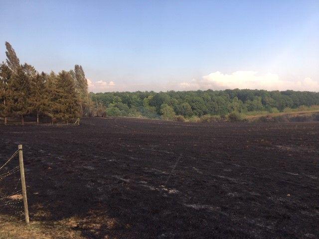 Un champ détruit par les flammes, près de Pacy-sur-Eure