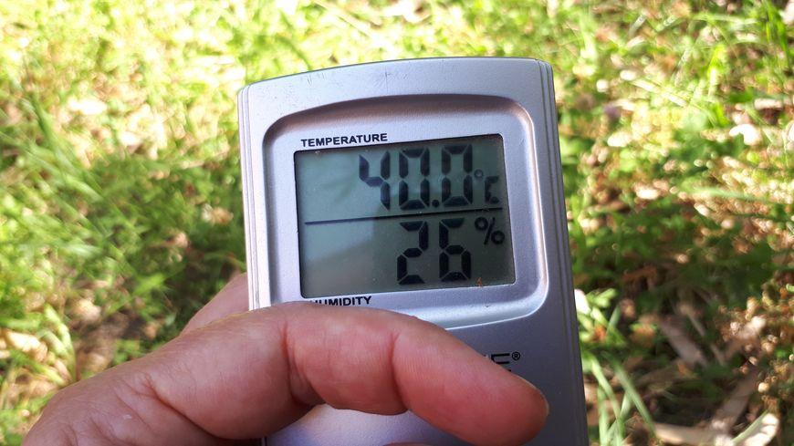 Les records de températures frôlent les 40 degrés en Côte-d'Or