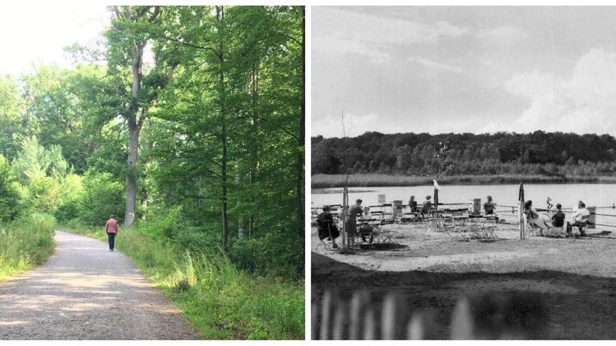 La forêt d'Oderfang aujourd'hui (à gauche) et l'étang d'Oderfang dans les années 50 (à droite)