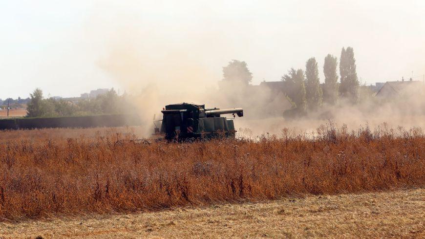 l'Yonne passe en crise sécheresse