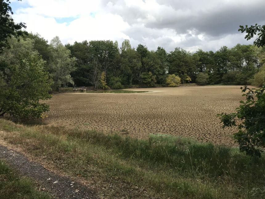L'étang de Catherine est à sec dans le jardin de sa maison, à Neuillay-les-Bois (Indre).