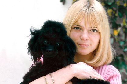 """En 1964, France Gall chantait """"Laisse tomber les filles"""". En 1965, elle pose avec un caniche. Coïncidence ?"""