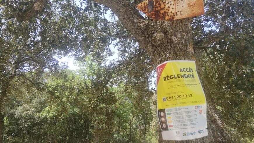 Des panneaux sont installés dans les forêts pour prévenir les promeneurs du risque incendie