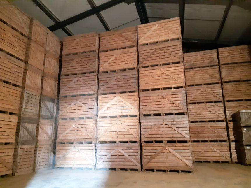 L'entrepôt de stockage des pommes de terre, juste après la récolte