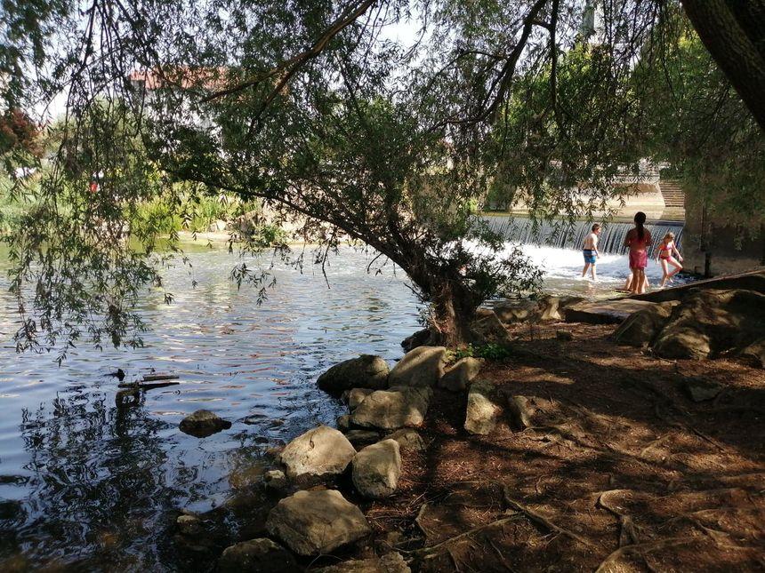 Il n'y a que 17 sites de baignade en milieu naturel autorisés en Moselle