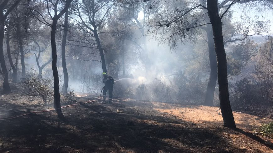 L'incendie a détruit plus de 25 hectares dans ce massif de Saint-Mandrier