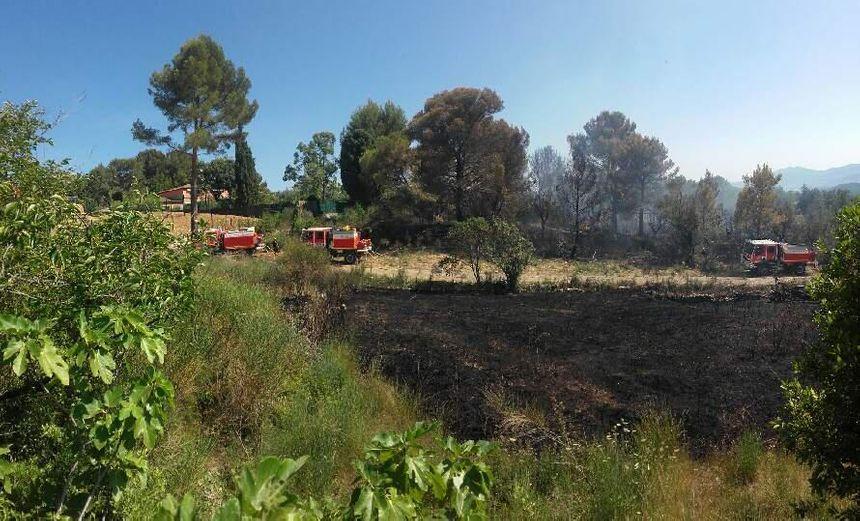 A Mouans-Sartoux c'est 1 ha qui est parti en fumée.