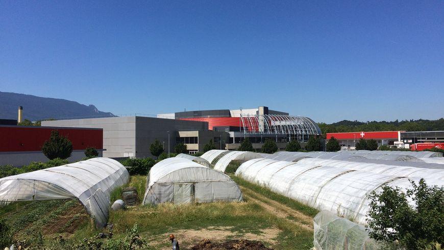 L''exploitation agricole de Franck Vuillermet à Bissy, derrrière les bâtiments du Phare, Chambéry, Savoie