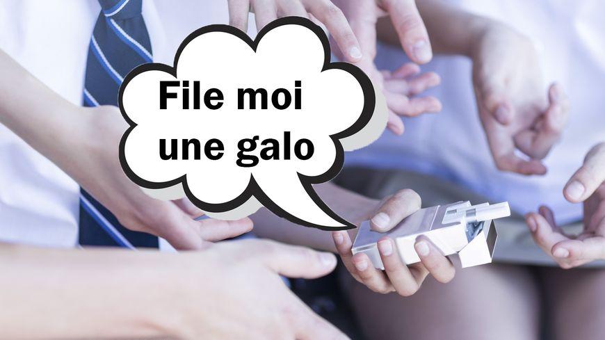 """Le mot """"galo"""" dans le Dico des Ados"""