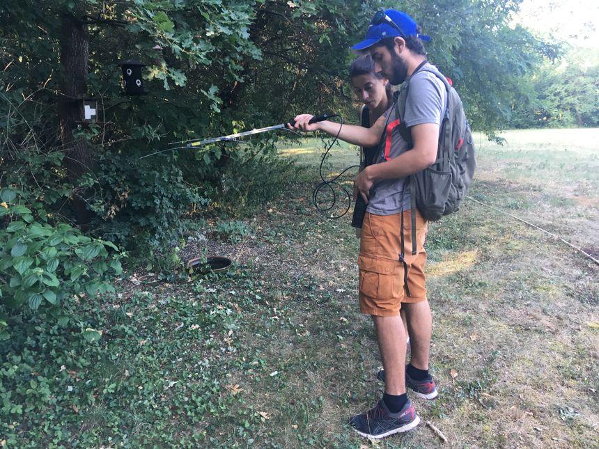 Cindy et Loïc, antenne à la main, tentent de récupérer une balise GPS accrochée à un hérisson.