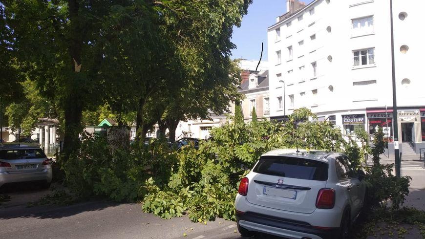 Une grosse branche tombe sur une voiture garée place Canclaux à Nantes