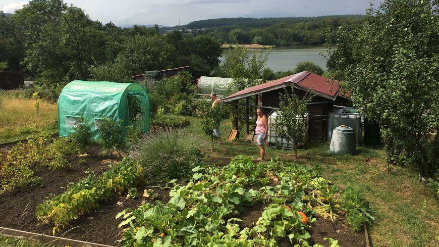Véronique et Jean-Pierre cultivent ce jardin depuis plus de cinq ans