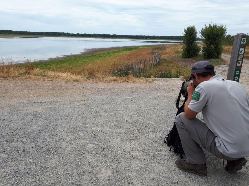 Sébastien Bur surveille les espèces d'oiseaux encore présentes