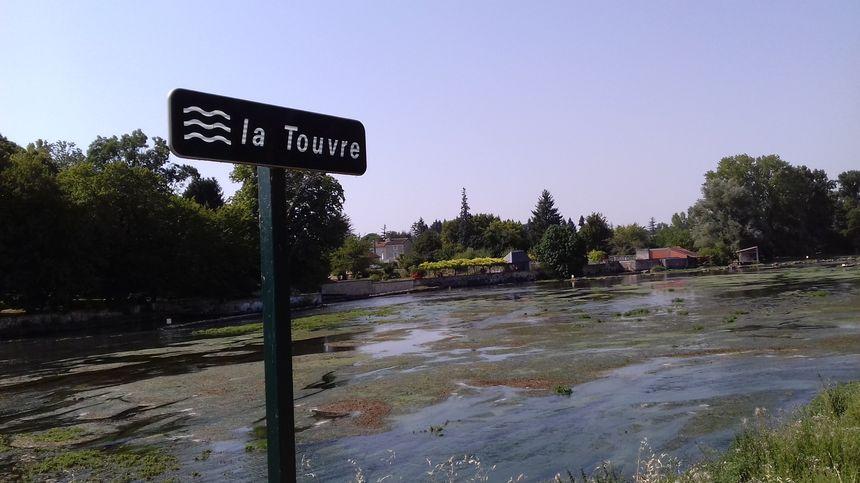 La rivière Touvre ne cesse de baisser, et les algues vertes prolifèrent