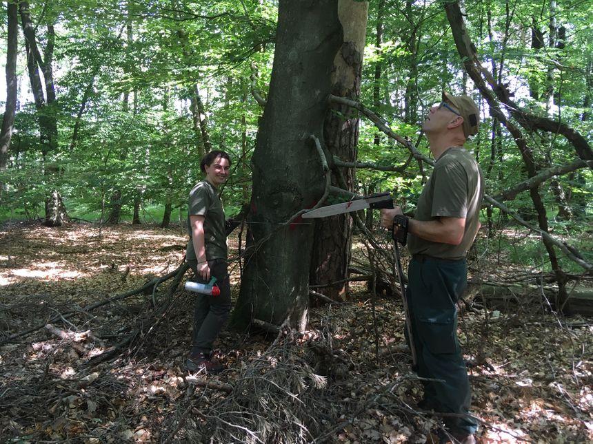Amélie Favret, ici avec l'un des collègues, entretient la forêt pour l'ONF