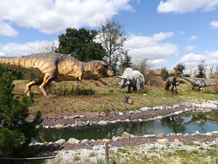 Les dinosaures sont bien en place dans le parc.