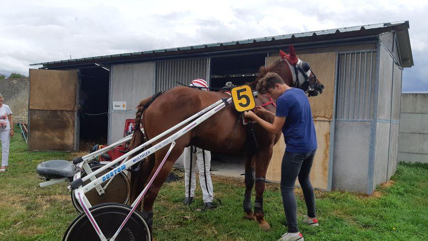 Un cheval avant la course au Petit Valençay