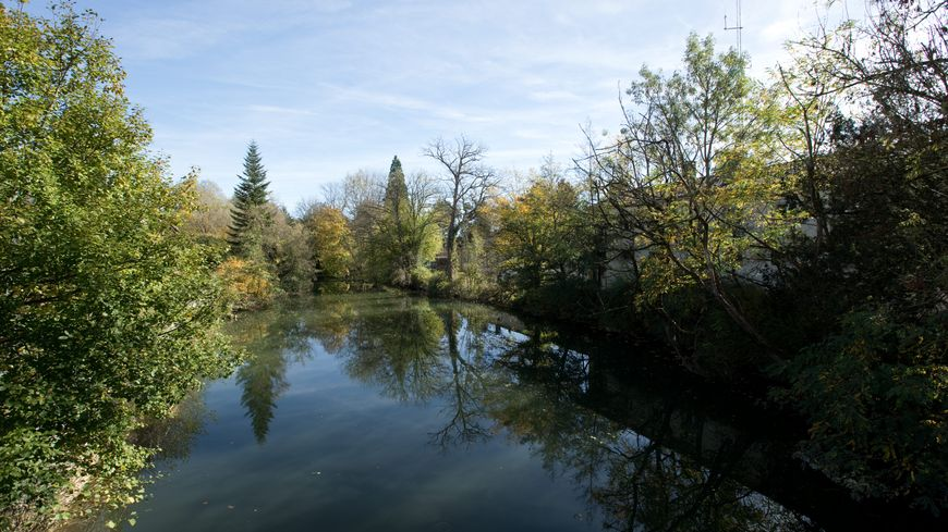 Cinq cours d'eau en Brenne posent problème