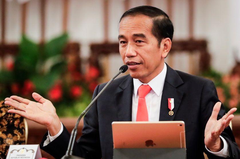 Indonésie : la forêt tropicale doit céder la place à une nouvelle capitale