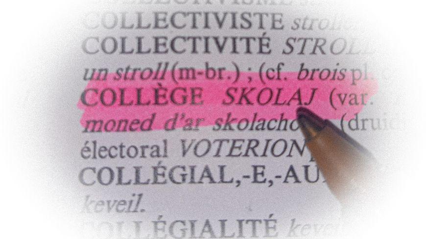 Collège dans le dictionnaire