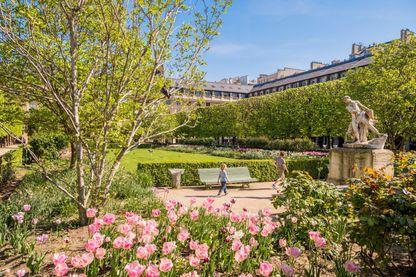 Le jardin du Palais-Royal à Paris.