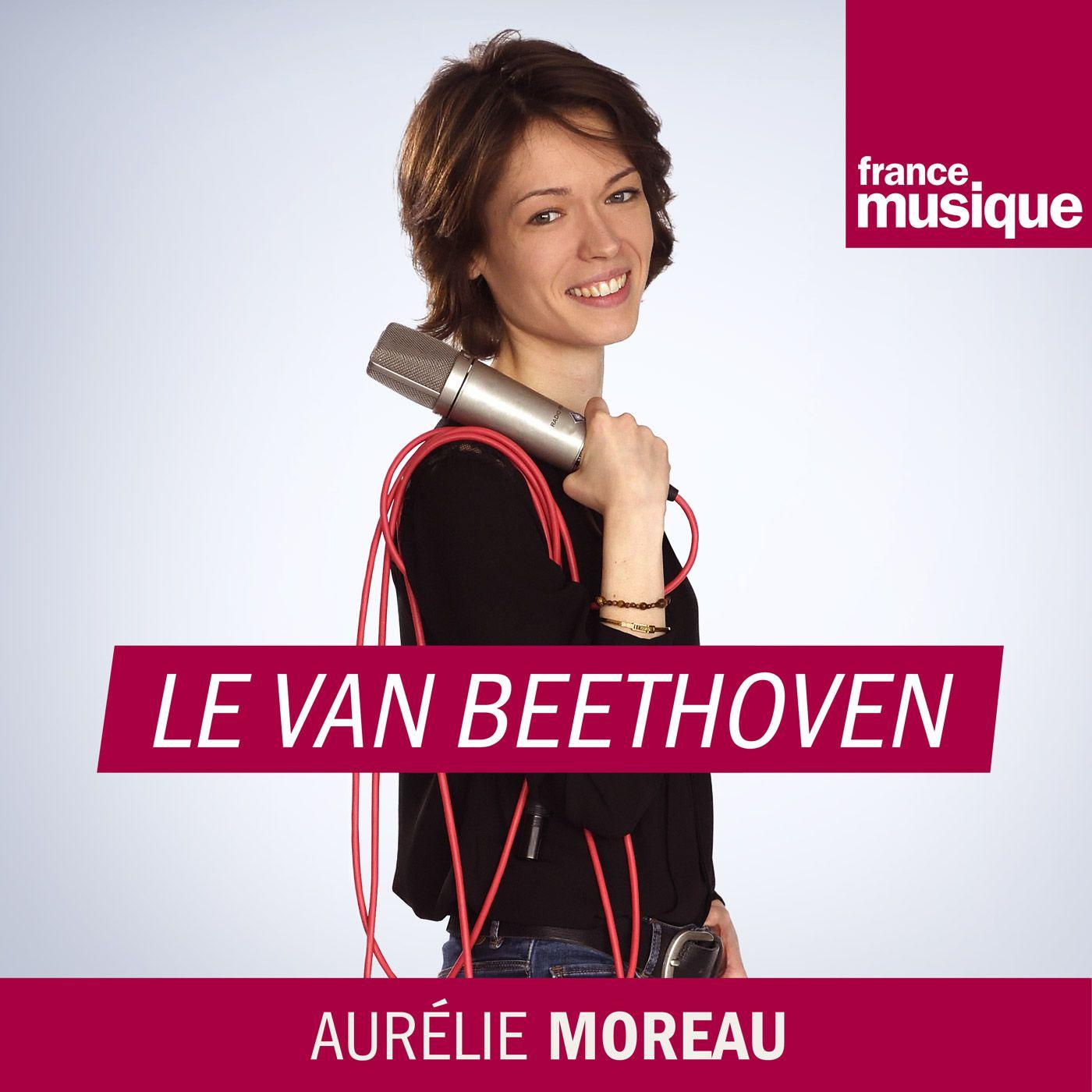 Image 1: Le van Beethoven