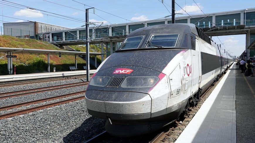 L'accident du TGV qui a fauché à Supt un troupeau de vaches ce week-end aura coûté plus de 100.000 euros à la SNCF.