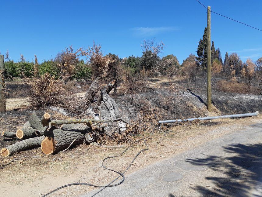 Les câbles détruits seront enlevés d'ici la fin de la semaine