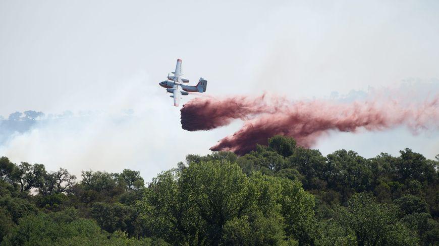 Illustration d'un avion bombardier d'eau de type Tracker