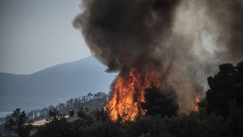 """Incendie sur l'île d'Eubée en Grèce: une """"énorme catastrophe écologique"""""""