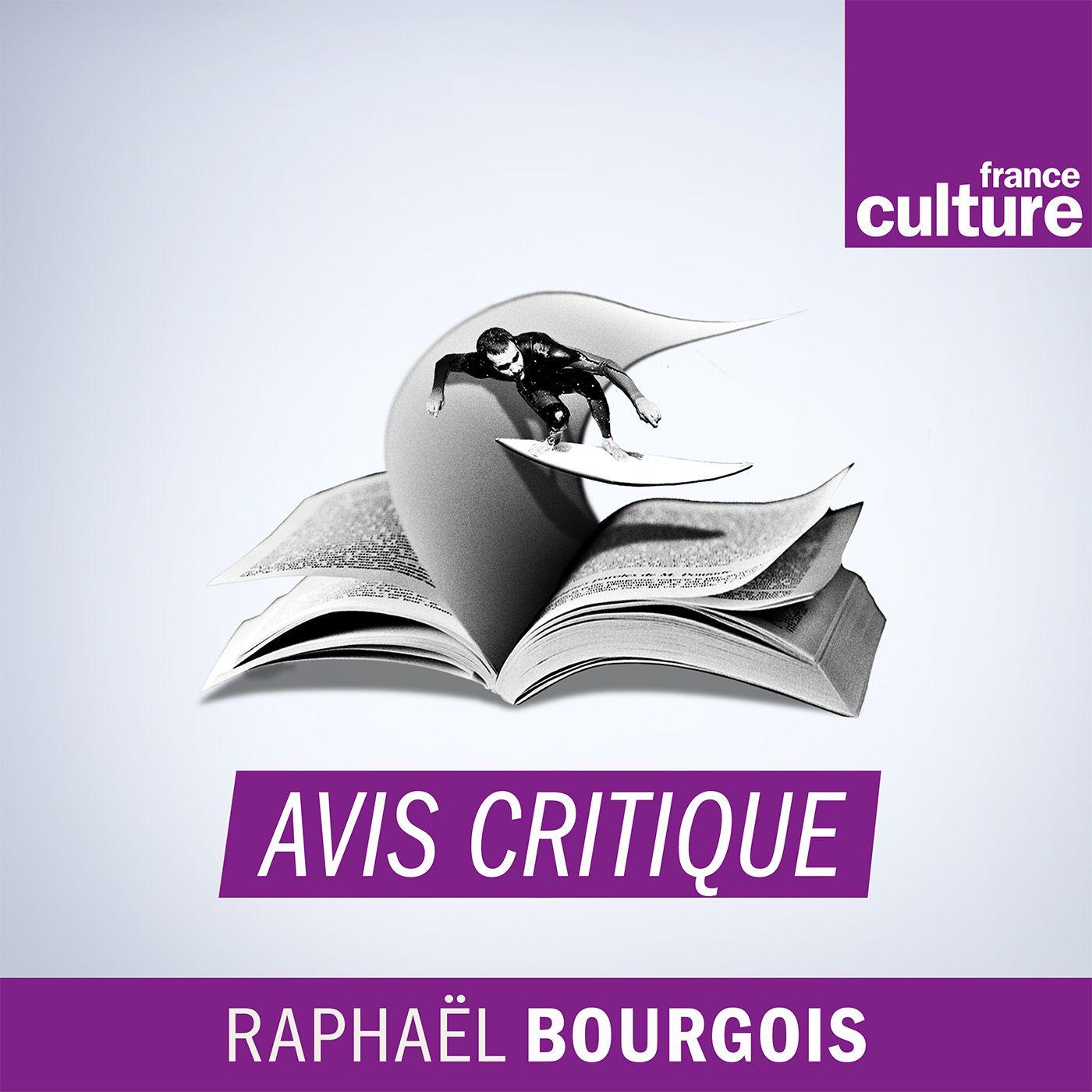 Image 1: Avis critique