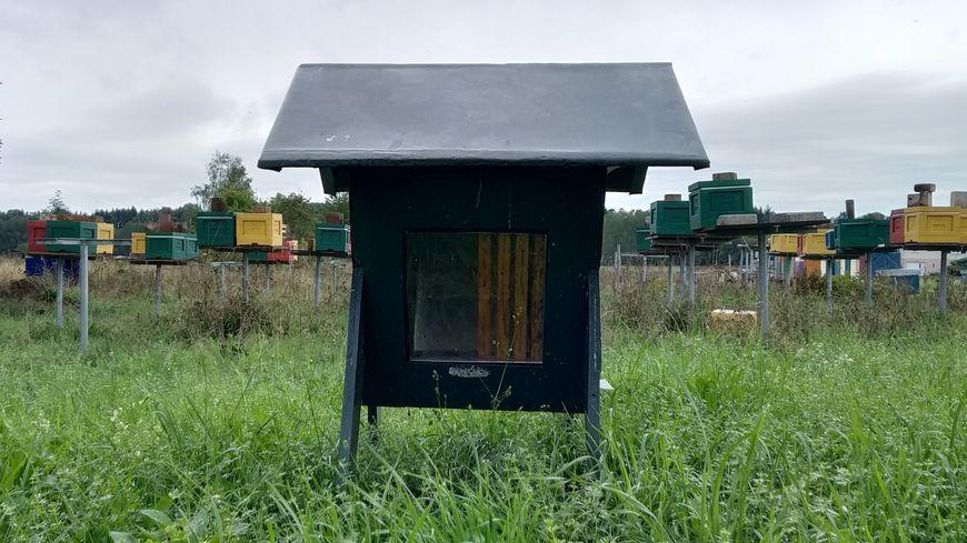 Les apiculteurs d'Api-douceur ont perdu 75% de leur production