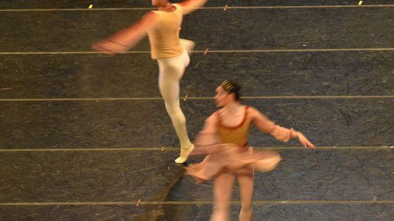 Focus sur les danseurs de ballet mexicain ! Ici, une répétition du Lac des Cygnes au Palacio de Bellas Artes.