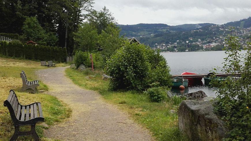 Bord du lac de Gérardmer (Vosges). Juin 2019.