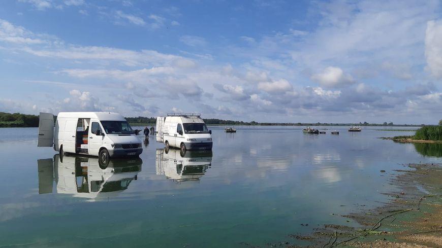 Au port de Passay, retour de pêche sur le lac de Grand Lieu