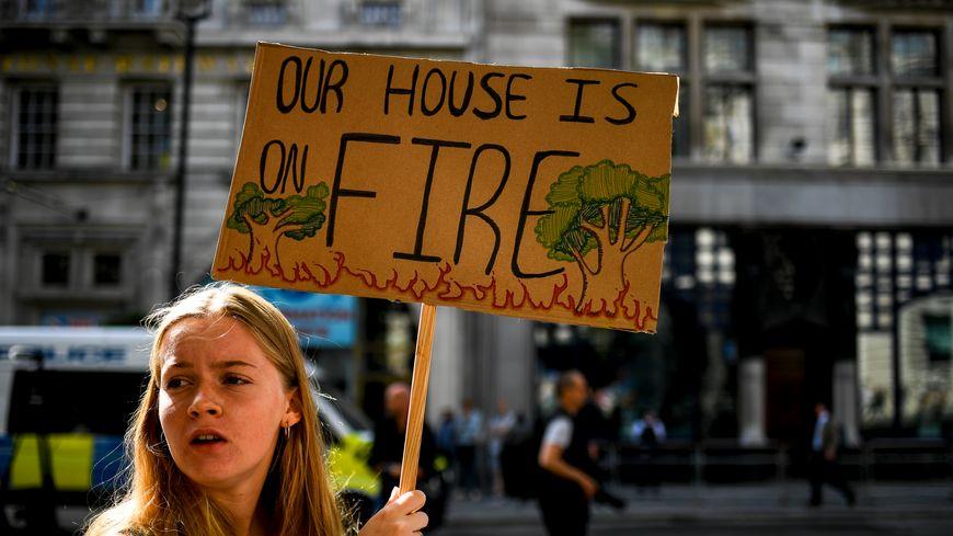 Des centaines de manifestants sont descendus dans la rue dans plusieurs pays européens pour appeler à sauver l'Amazonie.